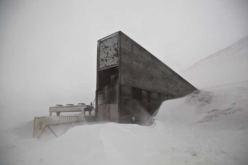 20110225_171844_Rowellseedvault.jpg
