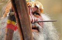 Australian Elder