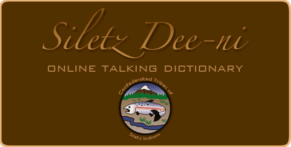 Silets_Dee_ni_Online_Talking_Dictionary.png